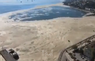 """أردوغان يتعهد بإنقاذ بحر مرمرة من """"مخاط البحر"""""""